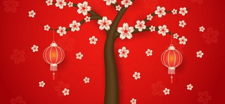 arbre_noel_spectacle_nantes-min